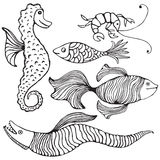 Fish collection Royalty Free Stock Photos