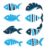 Fish collection Royalty Free Stock Image