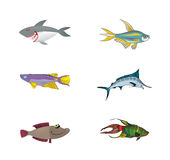 Fish Collection Vector Royalty Free Stock Image