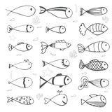 Fish collection on white background. Hand drawn style Stock Image
