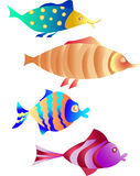Fish in color. Funny, whimsical fish set on white background. Vector image Royalty Free Stock Photos