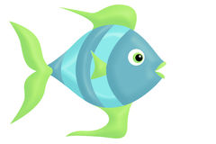 Fish. A colorful fish illustration fun Stock Image