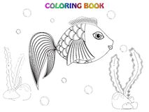 Fish coloring book. Fish, alga, stones and bubbles coloring book vector illustration