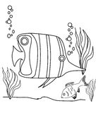 Fish coloring page. Fishes coloring page, useful as coloring book for kids Royalty Free Stock Photo