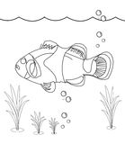 Fish coloring page. Useful as coloring book for kids Royalty Free Stock Image