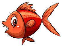 A fish Royalty Free Stock Images