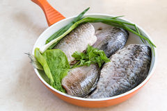 Fish and components for her preparation in a large skillet. Stock Image