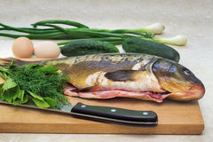 Fish and components for her preparation: vegetables, spices, oni Stock Photography