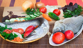 Fish and components for her preparation: vegetables, spices, par Royalty Free Stock Photography