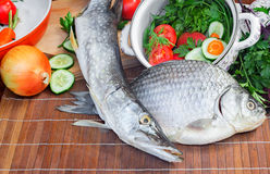Fish and components for her preparation: vegetables, spices, par Stock Images
