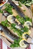 Fish cooked on fire on a plate with leaves parsley and lemon. Stock Photos