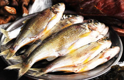 Fish for cooking. Fishes for cooking in kitchen Royalty Free Stock Photography