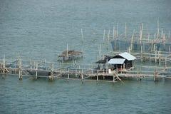 Fish coop Stock Photo