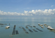 Fish coop farm in Songkhla Lake Thailand Royalty Free Stock Photos