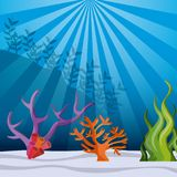 Fish, coral and algae icon. Sea life design. Vector graphic Royalty Free Stock Photography