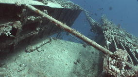 Fish and coral near shipwrecks Salem Express underwater in the Red Sea in Egypt. stock footage