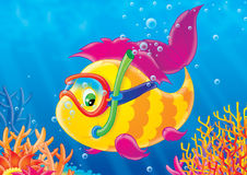 Fish of a coral reef. Illustration for children. A series  Reef . Animals of a coral reef. Fish Stock Image