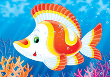 Fish of a coral reef. Illustration for children. A series  Reef . Animals of a coral reef. Fish Stock Photography