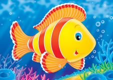 Fish of a coral reef. Illustration for children. A series  Reef . Animals of a coral reef. Fish Stock Images