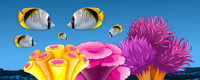 Fish and coral reef under the sea. Illustration Stock Photography