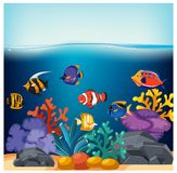 Fish and Corals in Fish Tank. Illustration Royalty Free Stock Photography