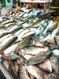 Fish on the counter of the street market. Seafood, catch, fisherman. Fish on the counter of street market. Seafood, catch, fisherman royalty free stock photo