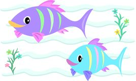 Fish Couple in Love. Here is a cute Fish Couple swimming in their favorite spot Royalty Free Stock Photography