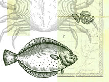 Fish; crab and sliced lemon; with a map. Drawing of a fish; crab and sliced lemon; with a map as background Royalty Free Stock Images