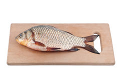 Fish crucian on board. Stock Photos