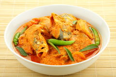 Fish curry Asian style. Stock Photo