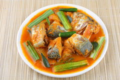 Fish curry Stock Photography