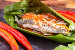 Fish curry in babana leaves. Stock Image