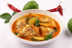 Fish curry with coconut and mango Stock Images