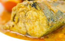 Fish Curry III Stock Photos