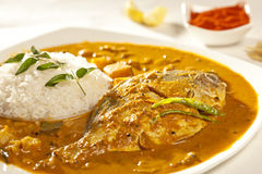 Fish curry with rice from India Royalty Free Stock Photography