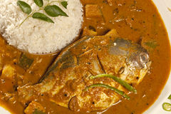 Fish curry with rice from India Royalty Free Stock Photo