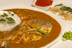 Fish curry with rice from India Stock Photography