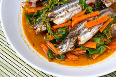 Fish Curry in white dish Stock Images