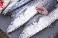 Fish cut Royalty Free Stock Photography