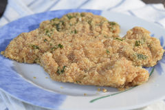 Fish cutlet Stock Image