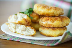 Fish cutlets Royalty Free Stock Photo