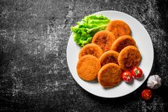 Fish cutlets on a plate with salad leaves and tomatoes. On black rustic background royalty free stock photos