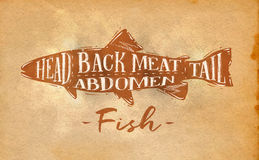 Fish cutting scheme craft. Poster fish cutting scheme lettering head, back meat, abdomen, tail in retro style drawing on craft paper background Royalty Free Stock Images
