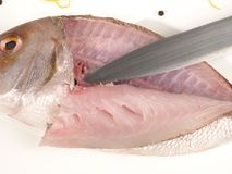 Fish - Cutting Sea Bream Fillet royalty free stock photography