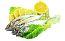 Fish decorated with lemon and salad Royalty Free Stock Images