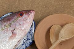Fish in decorated platter, ready to prepare. Raw fish known as red in Brazil, on plate Royalty Free Stock Images