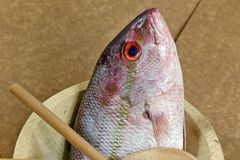 Fish in decorated platter, ready to prepare. Raw fish known as red in Brazil, on plate Stock Photo