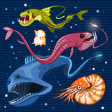 Fish Of The Deep Blue Sea Collection Set 02 Royalty Free Stock Images