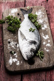 Fish delicacy Royalty Free Stock Images