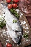 Fish delicacy Stock Photos